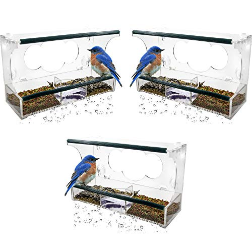 - Birdious 3-Pack Deluxe Window Bird Feeder with Strong Suction Cups & Seed Tray, Enjoy Clear View Wild Birds. Best Gift Idea