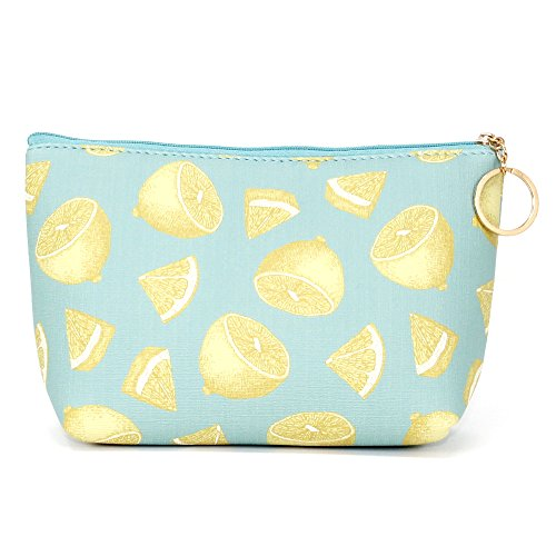 Me Plus Women Small Portable Travel Cosmetic Organizer Clutch Pouch Bag with Zipper Closure (Clutch Cosmetic Bag)