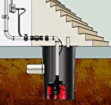 Red Lion 14942771 Dual Automatic Cast Iron Sump Pump System with 10-Foot Power Cord