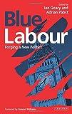 img - for Blue Labour: Forging a New Politics book / textbook / text book