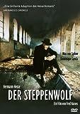 Steppenwolf, Der Hermann Hesse