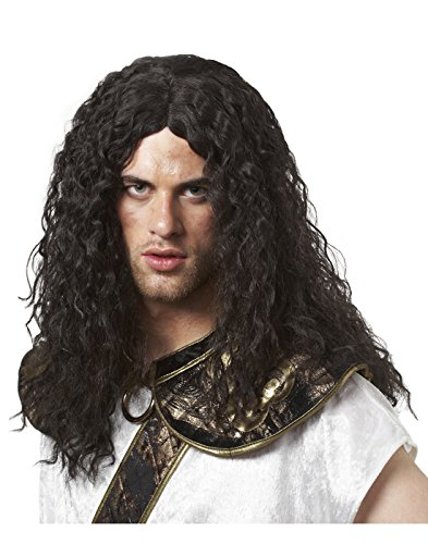 Costume Culture Barbarian Wig, Black, One Size