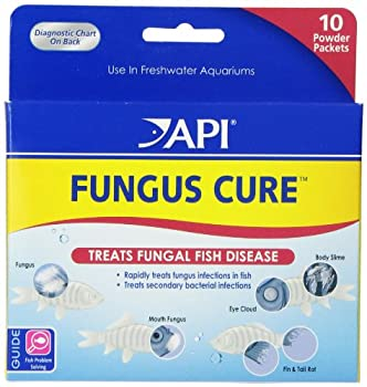API FUNGUS CURE Freshwater Fish Powder Medication 10Count Box  16P