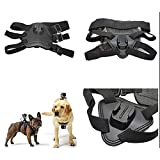ODRVM Action camera Dog Harness Mount Accessories Kit Strap for Gopro/SJCAM/ODRVM/Pictek/Vtin/APEMAN/Campark/Patec/Victure/akaso/ICOOLS/DBPower/ANART/GooKit/SJ4000/yi Sports Camera Accessory Kit