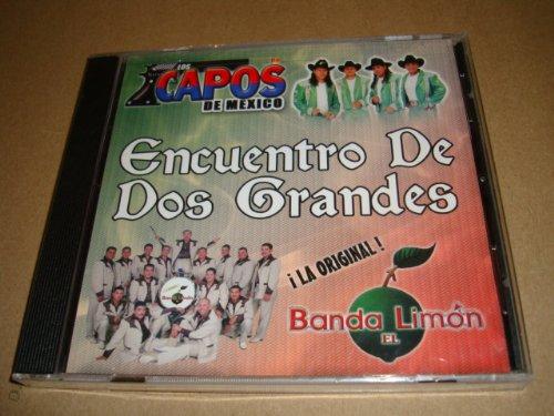 Los Capos 5 popular De Special price Mexico Banda El Encuentro Grandes Dos Aud Limon