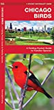 Chicago Birds: A Folding Pocket Guide to Familiar Species in Northeastern Illinois (A Pocket Naturalist Guide)