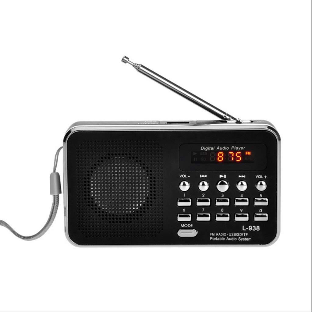ZWS Radio Portable FM Radio HiFi Card Speaker Digital Multimedia Loudspeaker Camping Hiking Outdoor Sports TF Card Current Affairs Information (Color : Black)