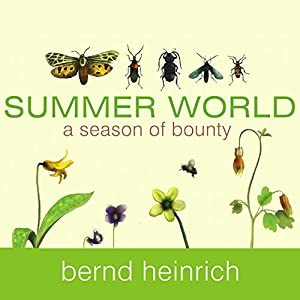 Summer World Audiobook