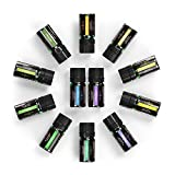 Anjou Aromatherapy Top 12 Essential Oils Set, Include 100% Pure Lavender, Sweet Orange, Tea Tree, Eucalyptus, Lemongrass, Peppermint, Bergamot, Frankincense, Lemon, Rosemary, Cinnamon, and Ylang-Ylang