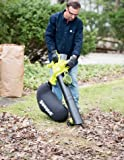 Sun Joe iONBV 40-Volt 4.0 Ah Variable-Speed (up to 201 MPH) Cordless Blower/Vacuum/Mulcher with Brushless Motor