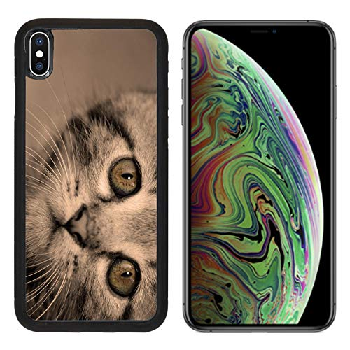 (Luxlady Apple iPhone Xs MAX Case Aluminum Backplate Bumper Snap Cases Image ID: 22524736 Close up Portrait of Tabby House cat Sepia Tone)