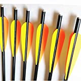 Hunting Baby 16 Inch Fiberglass Arrow Bolts For Crossbow Fletched 4 Inch Vane with repalceable 100 Grain Broadheads (12 Pack)
