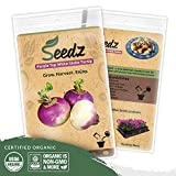 Organic Turnip Seeds (APPR. 1,100) Purple Top White Globe Turnip - Heirloom Vegetable Seeds - Certified Organic, Non-GMO, Non Hybrid - USA