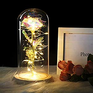 Xinhuaya Artificial Rose Transparent Glass Cover with Lighting Beige Base Home Decoration Party Supplies 25