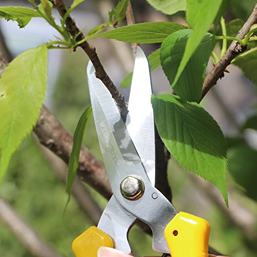 DOWELL Gardening Hand Pruner Pruning Shear with Straight Stainless Steel Blades