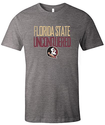 NCAA Florida State Seminoles Adult NCAA Dotted Phrase Short sleeve Triblend T-Shirt,Medium,Grey