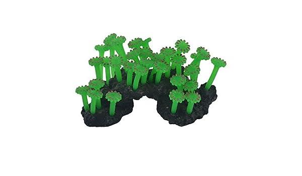 Amazon.com : eDealMax silicona Waterscape acuario pecera de Emulational Coral Hierba Planta Decoración Adorna : Pet Supplies
