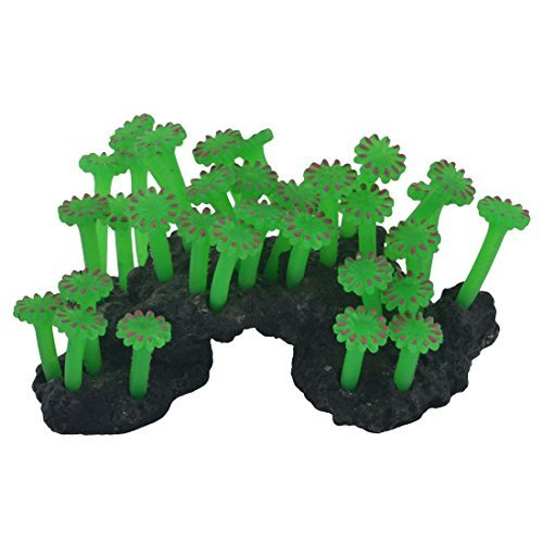 Amazon.com : eDealMax silicona Waterscape acuario pecera de Emulational Coral Hierba Planta Decoración Adorna : Pet Supplies