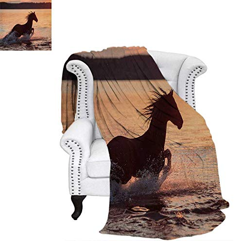 Super Soft Lightweight Blanket Horse Sea at Sunset Time Horizon Speed Exotic Nature Animal Picture Art Oversized Travel Throw Cover Blanket 62