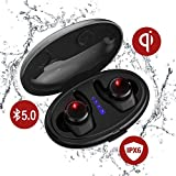 True Wireless Earbuds with Qi-Enabled Wireless Charging Case,Tiamat Thor II【New】Bluetooth 5.0 Sports Headphone, Cozy Wireless Headsets with Mic, IPX6 7 Waterproof Long Lasting Earbuds