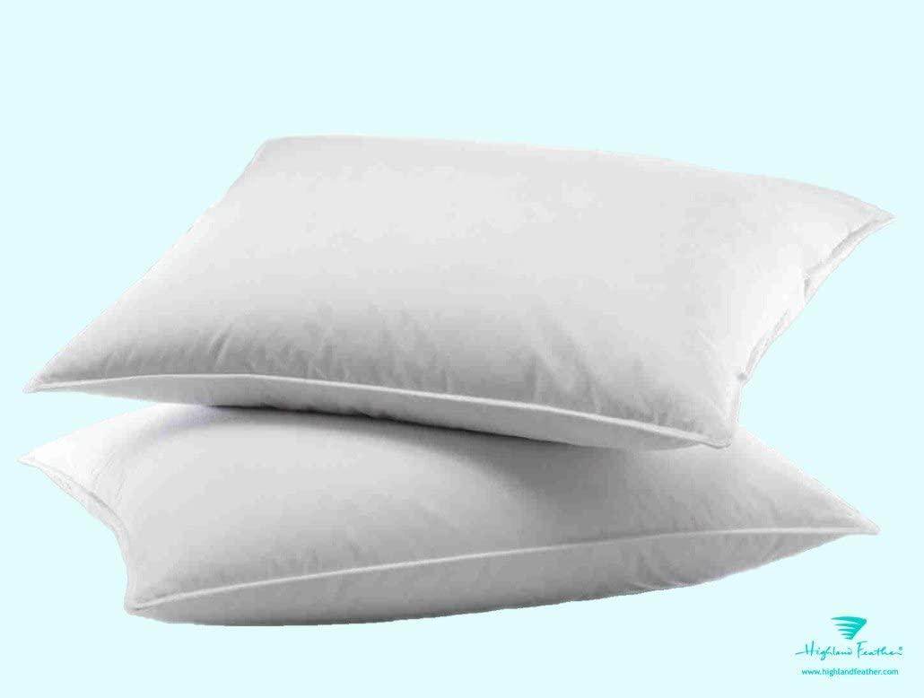 KING FIRM DENSITY PILLOW 50/% WHITE EUROPEAN DUCK DOWN BETTER THAN HOTEL QUALITY