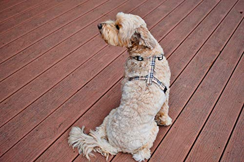 Furberry Fully Adjustable DOG HARNESS - Tan Plaid Fashion Nova Checks for  Pet Gift Walking New Puppy - Fits All Small Medium and Large Sizes - FREE