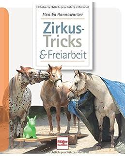 gesund/geschickt&gut erzogen Theby Reiten Ratgeber/Buch Clickerfitte Pferde