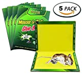 TILLAIN Mouse Trap 5 Pack Peanut Butter Scented Strength Rat Glue Boards Professional Indoor Outdoor Traps Suitable For Large And Small Mice And Harmful Animals