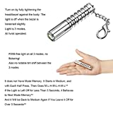 LUMINTOP® Stainless Steel Worm AAA 110 Lumen Compact Mini Keychain Handheld Flashlight with Cree XP-G2 LED