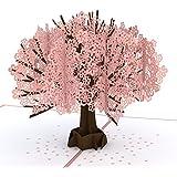 Lovepop Cherry Blossom Pop Up Card, 3D Card, Mother's Day Card, Springtime Card, Birthday Card