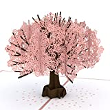 Lovepop Cherry Blossom Pop Up Card, 3D Card, Birthday Card, Springtime Card, Summertime Card, Birthday Card