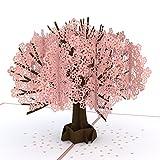 PAPER_PRODUCT  Amazon, модель Lovepop Cherry Blossom Pop Up Card, 3D Card, Birthday Card, Springtime Card, Birthday Card, артикул B073RQTPSD