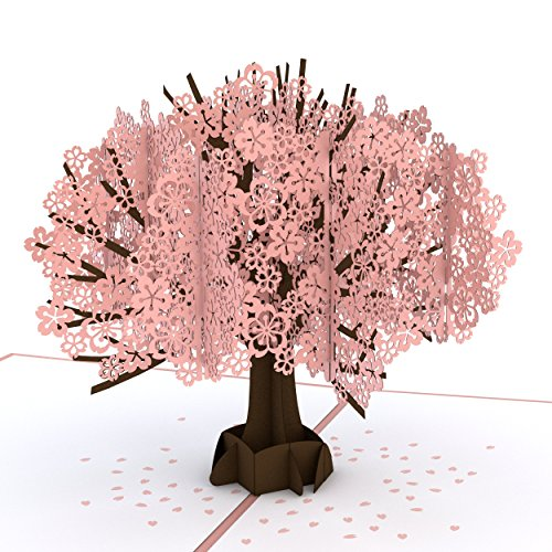 Lovepop Cherry Blossom Pop Up Card, 3D Card, Lovepop Cards, Greeting Card, Birthday Card, Popup Greeting Cards, Mother's Day Card, Anniversary Card, Spring Card, Card for Mom (Bday Card For Best Friend)