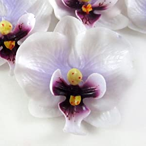 "(12) Small White Purple Phalaenopsis Orchid Silk Flower Heads - 2"" - Artificial Flowers Heads Fabric Floral Supplies Wholesale Lot for Wedding Flowers Accessories Make Bridal Hair Clips Headbands Dress 8"