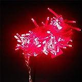 BGFHDSD RGB 10 Meters 100 LED String Light Indoor 10M Xmas Decoration Light Christmas Party Wedding 220V EU Plug Strings Light Warm White 110V US