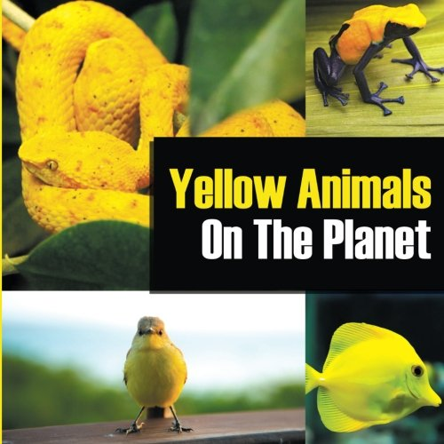 Yellow Animals On The Planet pdf