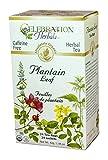 Celebration Herbals Teabags Herbal Plantain Leaf Tea Organic -- 24 Herbal Tea Bags