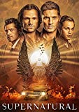 Supernatural: The Fifteenth DVD