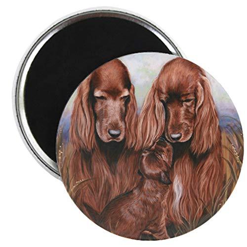 CafePress Irish_Setter_Dogs 2.25