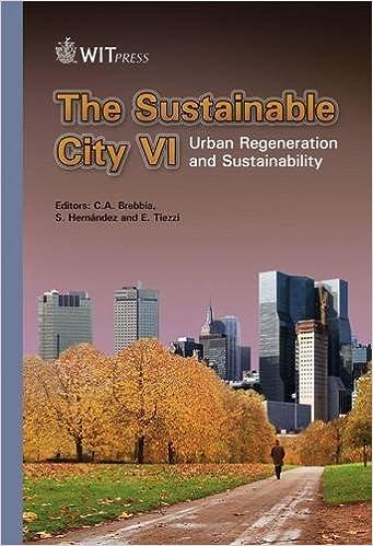 amazon the sustainable city vi urban regeneration and