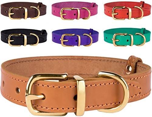 leather dog collars large breed BronzeDog Genuine Leather Dog Collar Adjustable Durable Pet