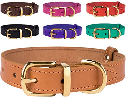 BronzeDog Genuine Leather Dog Collar with Brass Buckle Adjustable Durable Pet Collars for Dogs Small Medium Large Puppy Black Brown Red Pink Purple Green (Neck Size 16