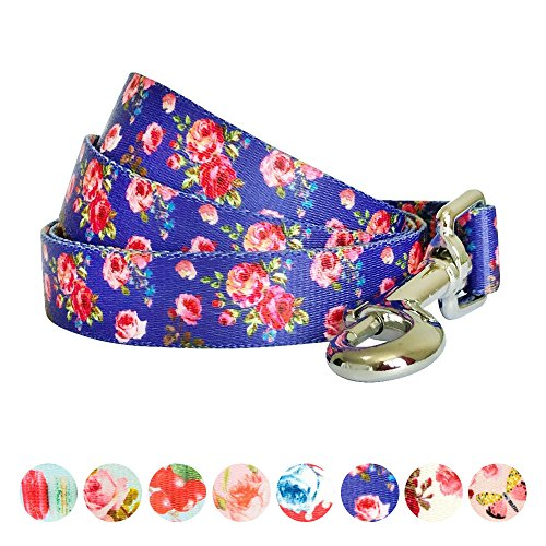 Blueberry Pet Durable Spring Scent Inspired Rose Print Irish Blue Dog Leash 5 ft x 3/4