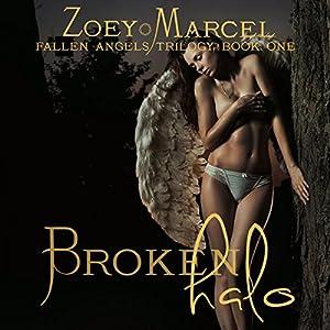 Broken Halo Audiobook