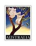 Australia - Koala or Native Bear - Vintage World Travel Poster by Eileen Mayo c.1956 - Master Art Print - 9in x 12in