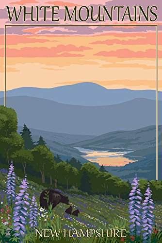 White Mountains, New Hampshire - Bear and Cubs with Flowers (9x12 Art Print, Wall Decor Travel Poster)