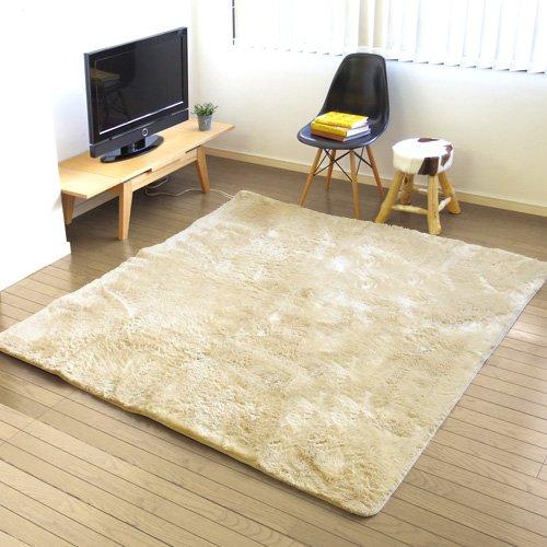 日本製 plywood オリジナル 電磁波99%カット 電子コントロールカーペット&選べる ラグセット [ モダンフェザー/エクリュ ]   B0095B36YM