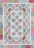 Pattern~Sugar and Spice~45 x 62 by Deb Tucker of