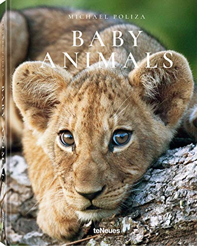 Animals Adults And Babies (Baby Animals)