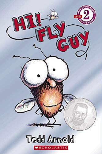 The Best Chapter Books for 1st Graders featured by top Seattle lifestyle blogger, Marcie in Mommyland: Fly Guy